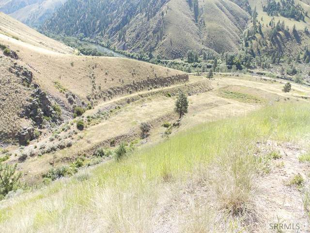 TBD Salmon River Road, North Fork, ID 83466 (MLS #2131281) :: The Perfect Home