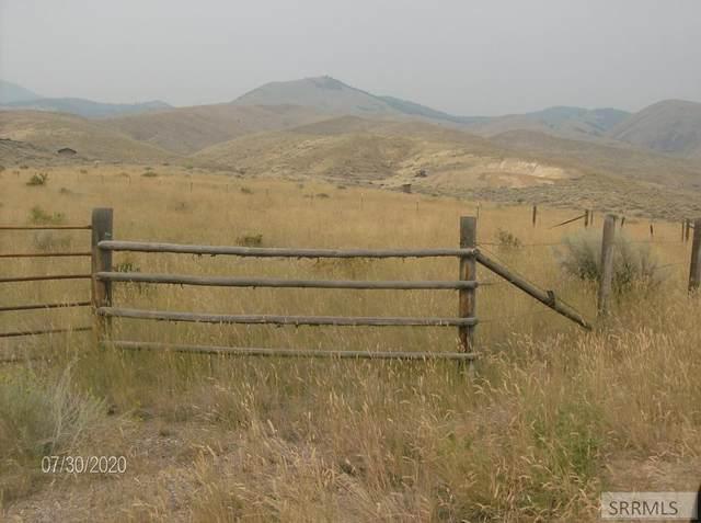 TBD Blackrock Road, Salmon, ID 83467 (MLS #2131758) :: The Perfect Home
