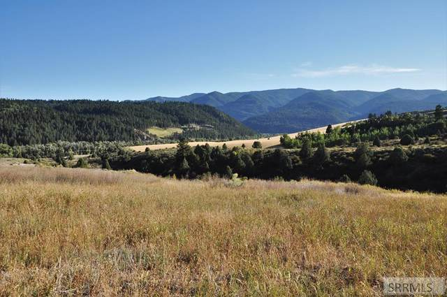 TBD Trail View Road, Irwin, ID 83428 (MLS #2132057) :: Team One Group Real Estate