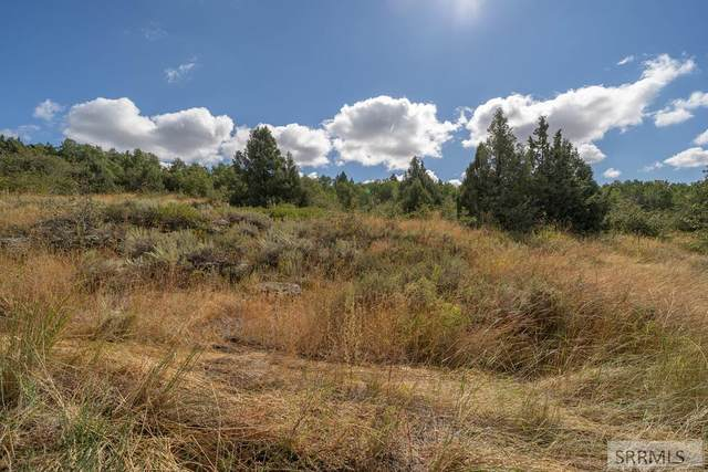 1696 Mountain Laurel Drive, Ashton, ID 83420 (MLS #2132087) :: The Group Real Estate