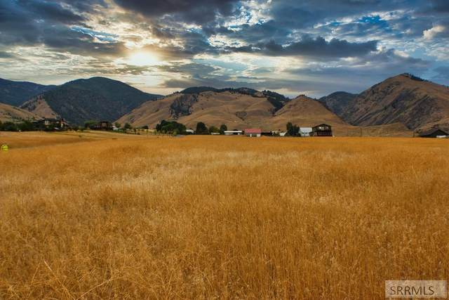 TBD Melanie Drive, Salmon, ID 83467 (MLS #2132486) :: The Perfect Home