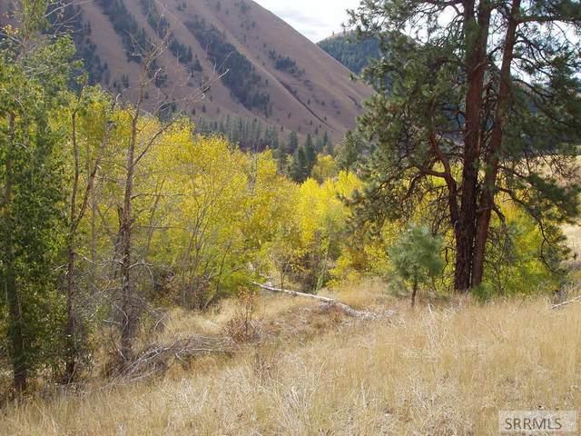 999 Chukar Ridge Lane Magpi, North Fork, ID 83466 (MLS #2132907) :: The Perfect Home