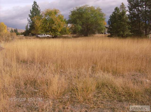 TBD Roosevelt Avenue, Salmon, ID 83467 (MLS #2132927) :: The Perfect Home