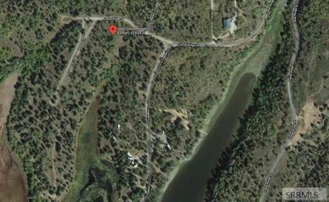 1866 Cedar Ridge Street, Ashton, ID 83420 (MLS #2134458) :: Silvercreek Realty Group