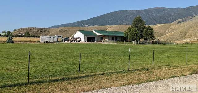 44 Aldous Drive, Salmon, ID 83467 (MLS #2134510) :: The Perfect Home