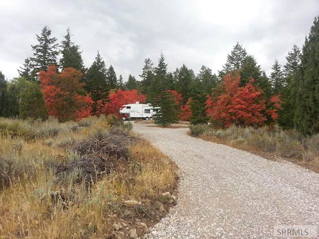 Bancroft, ID 83217 :: The Perfect Home