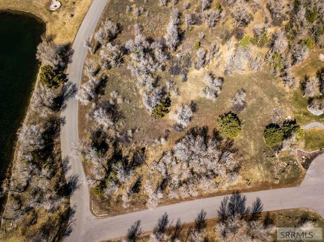 Lot 7 E 310 N, Rigby, ID 83442 (MLS #2135685) :: Team One Group Real Estate