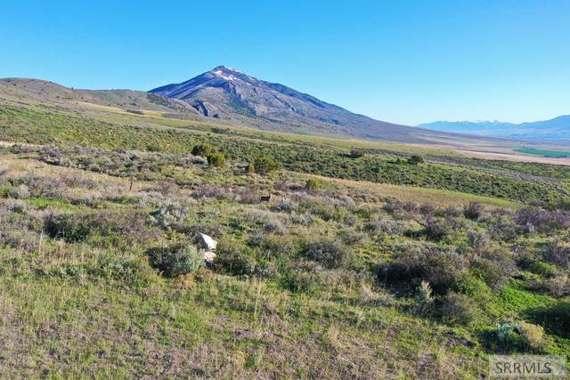TBD W Sublette Street, Arimo, ID 83214 (MLS #2136233) :: The Perfect Home