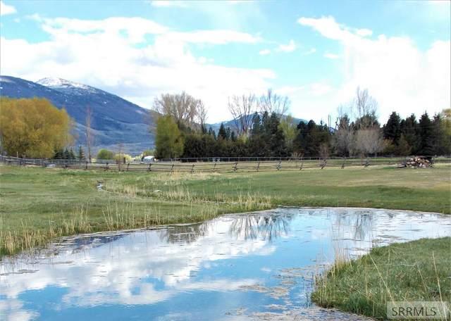 TBD Dutton Lane, Salmon, ID 83467 (MLS #2136390) :: Silvercreek Realty Group