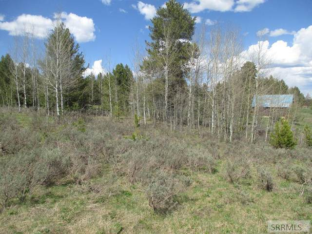 3519 Chickasaw Drive, Island Park, ID 83420 (MLS #2136494) :: The Perfect Home