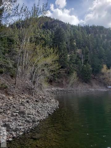 TBD S Shoreline Drive, Salmon, ID 83467 (MLS #2136575) :: Silvercreek Realty Group