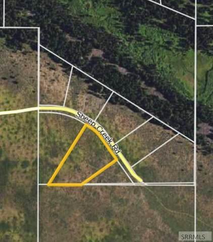 3204 Sheep Creek Road, Island Park, ID 83429 (MLS #2136603) :: Silvercreek Realty Group