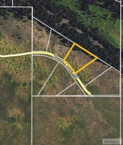 3209 Sheep Creek Road, Island Park, ID 83429 (MLS #2136607) :: Silvercreek Realty Group