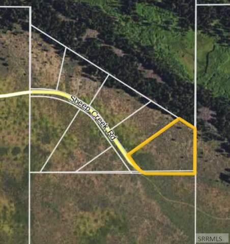 3215 Sheep Creek Road, Island Park, ID 83429 (MLS #2136609) :: Silvercreek Realty Group