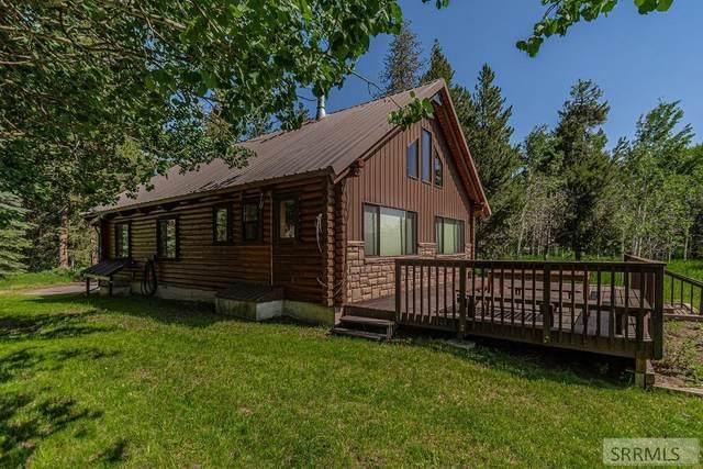 1528 E Elk Loop Road, Ashton, ID 83420 (MLS #2137319) :: Team One Group Real Estate