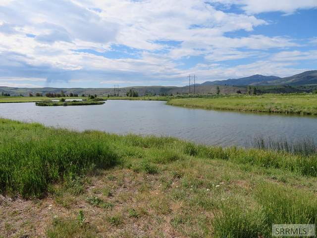 Lot 1 Golden Eye Drive, Swan Valley, ID 83449 (MLS #2137784) :: Team One Group Real Estate