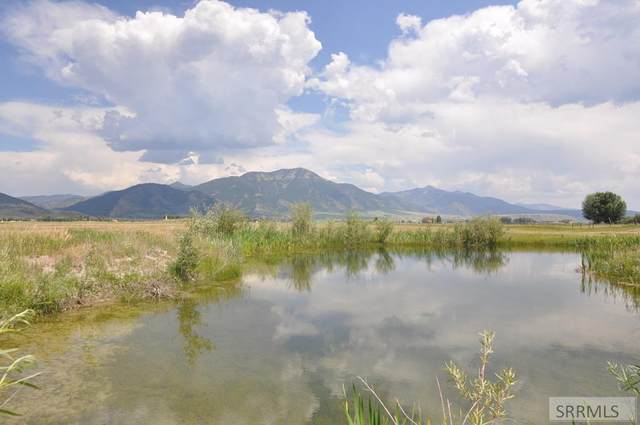 lot 1&2, Green Wing Drive, Swan Valley, ID 83449 (MLS #2138209) :: Team One Group Real Estate