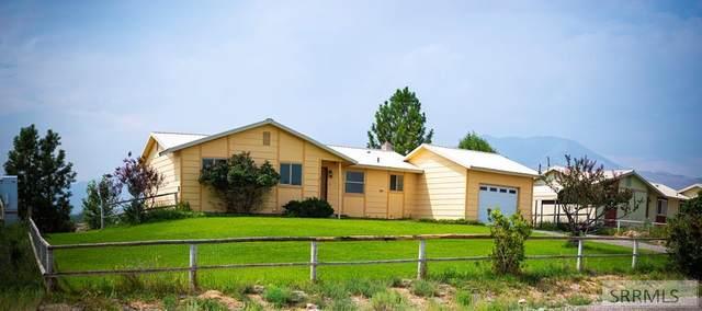 1131 Apex Lane, Challis, ID 83226 (MLS #2138564) :: The Perfect Home