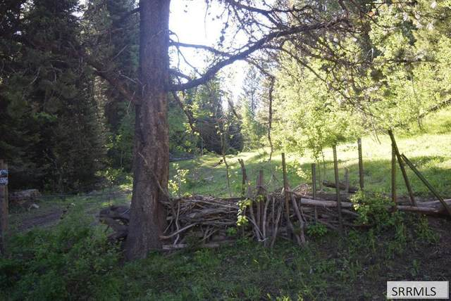 Lot 9 Sellers Creek Road, Firth, ID 83236 (MLS #2138665) :: Team One Group Real Estate
