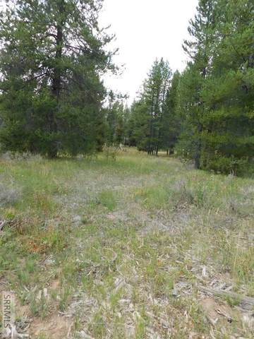 3770 Moose Breath Lane, Island Park, ID 83429 (MLS #2139327) :: Team One Group Real Estate