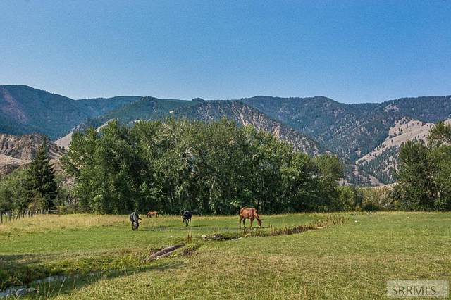 North Fork, ID 83466 :: The Perfect Home