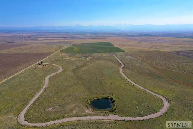 8815 Ditty Way, Tetonia, ID 83452 (MLS #2139836) :: Team One Group Real Estate