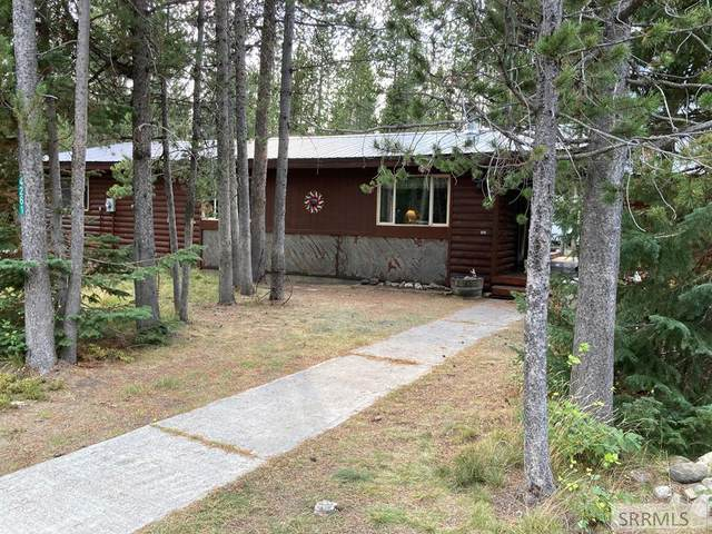 4261 Stevenson Street, Island Park, ID 83429 (MLS #2139868) :: Team One Group Real Estate