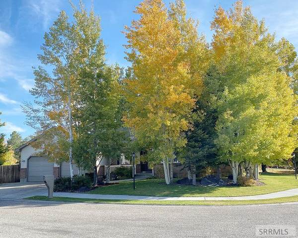 420 W 3rd N, Rigby, ID 83442 (MLS #2140497) :: The Perfect Home