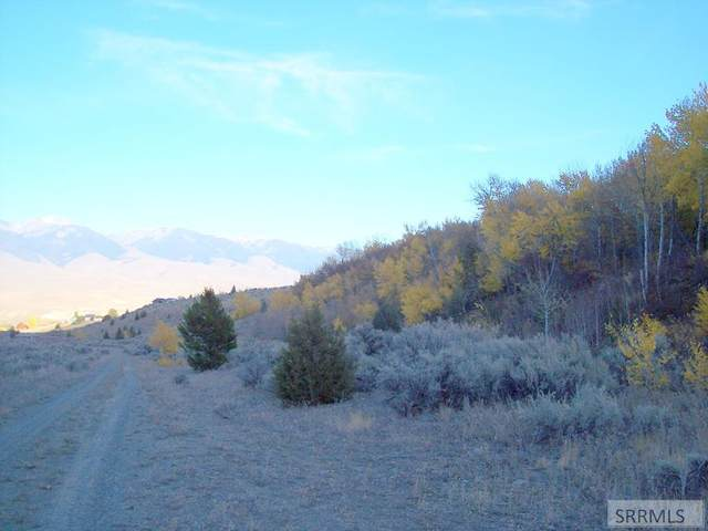 TBD Oliver Drive, Salmon, ID 83467 (MLS #2140505) :: Team One Group Real Estate