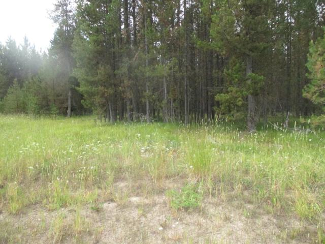 3650 Redtail Drive, Island Park, ID 83429 (MLS #198385) :: The Perfect Home-Five Doors