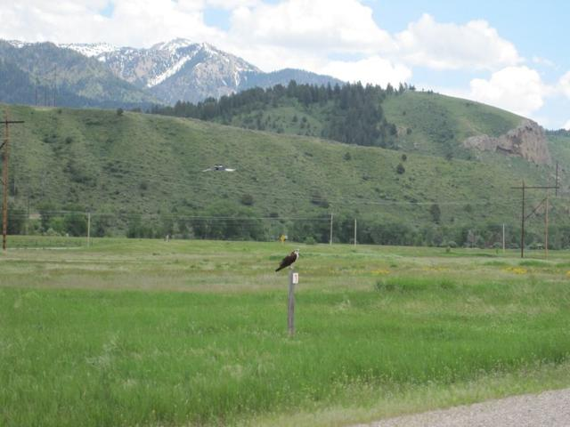 L1 B2 Raven Road, Irwin, ID 83428 (MLS #2115079) :: The Perfect Home Group