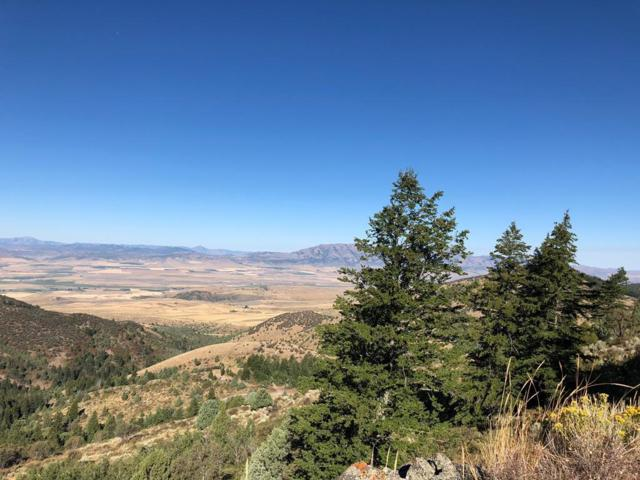 TBD High Country Road, Lava Hot Springs, ID 83246 (MLS #2116946) :: The Perfect Home Group