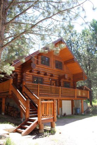 1469 Potpourri Drive, Ashton, ID 83420 (MLS #2116949) :: The Perfect Home-Five Doors