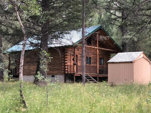 3980 Bootjack Drive, Island Park, ID 83429 (MLS #2117035) :: The Perfect Home-Five Doors
