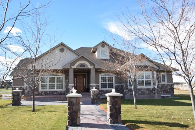 1555 N Romantica Drive, Idaho Falls, ID 83402 (MLS #2118057) :: The Perfect Home-Five Doors