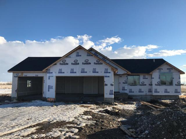 4014 E 54 N, Rigby, ID 83442 (MLS #2120081) :: The Perfect Home