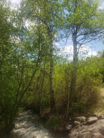 999 Napias Road, Salmon, ID 83467 (MLS #2120372) :: The Perfect Home