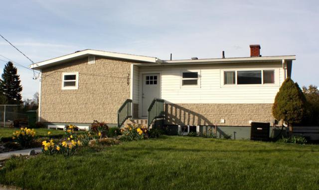 209 Neyman Street, Salmon, ID 83467 (MLS #2120834) :: The Perfect Home