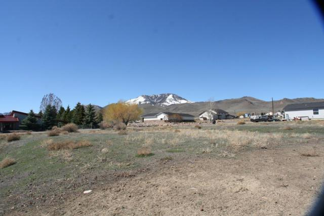 410 Leesburg Lane, Challis, ID 83226 (MLS #2121051) :: The Perfect Home