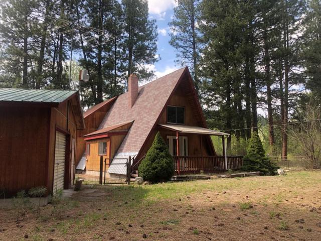 3058 N Hwy 93, GIBBONSVILLE, ID 83463 (MLS #2121567) :: The Perfect Home