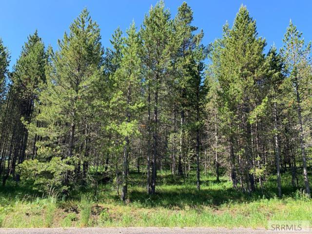 4118 Sawtelle Peak Road, Island Park, ID 83429 (MLS #2122149) :: Silvercreek Realty Group