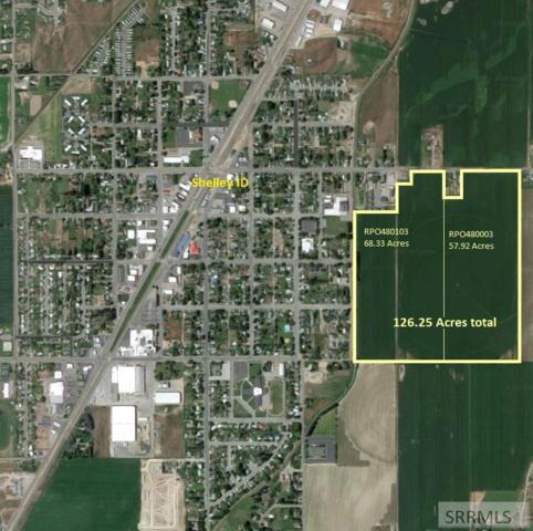 863 E 1300 N, Shelley, ID 83274 (MLS #2122181) :: The Perfect Home