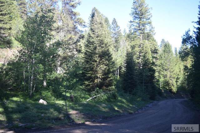 Lot 9 Sellers Creek Road, Firth, ID 83236 (MLS #2127292) :: The Perfect Home