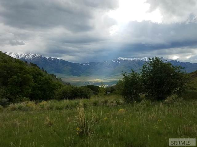 TBD Harkness Canyon Road, Mccammon, ID 83250 (MLS #2129513) :: Team One Group Real Estate
