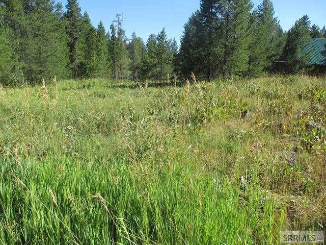 3518 Bull Moose Lane, Island Park, ID 83429 (MLS #2131109) :: Silvercreek Realty Group