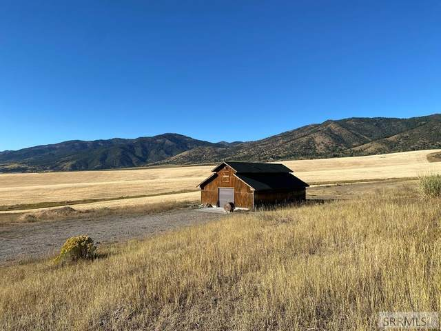215 Mountain Maple Drive, Irwin, ID 83428 (MLS #2132152) :: Team One Group Real Estate
