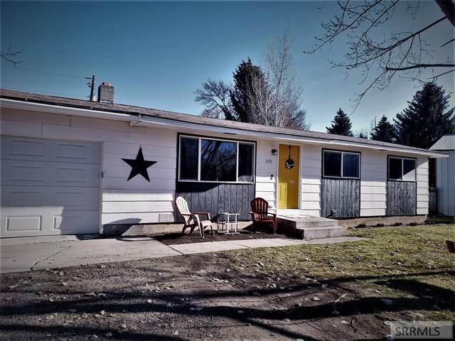 230 Ada Avenue, Inkom, ID 83245 (MLS #2133108) :: The Perfect Home