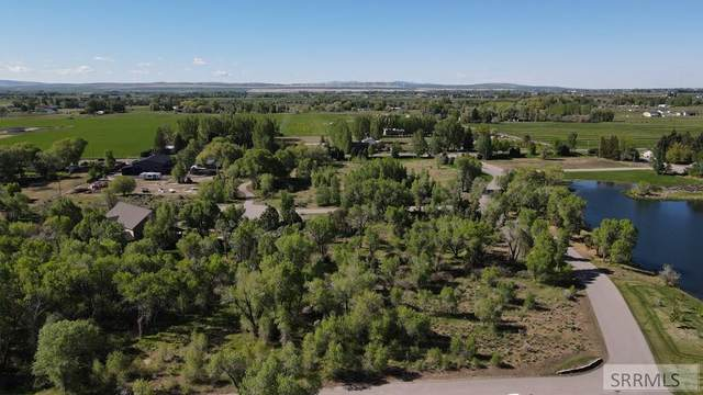 Lot 8 E 318 N, Rigby, ID 83442 (MLS #2135686) :: Team One Group Real Estate