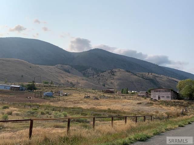 36 Blue Camas Road, Salmon, ID 83467 (MLS #2139055) :: Team One Group Real Estate