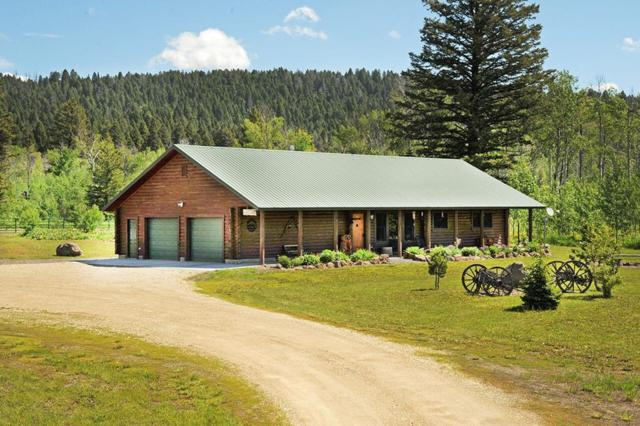 4152 Lariat Way, Island Park, ID 83429 (MLS #2114802) :: The Perfect Home-Five Doors
